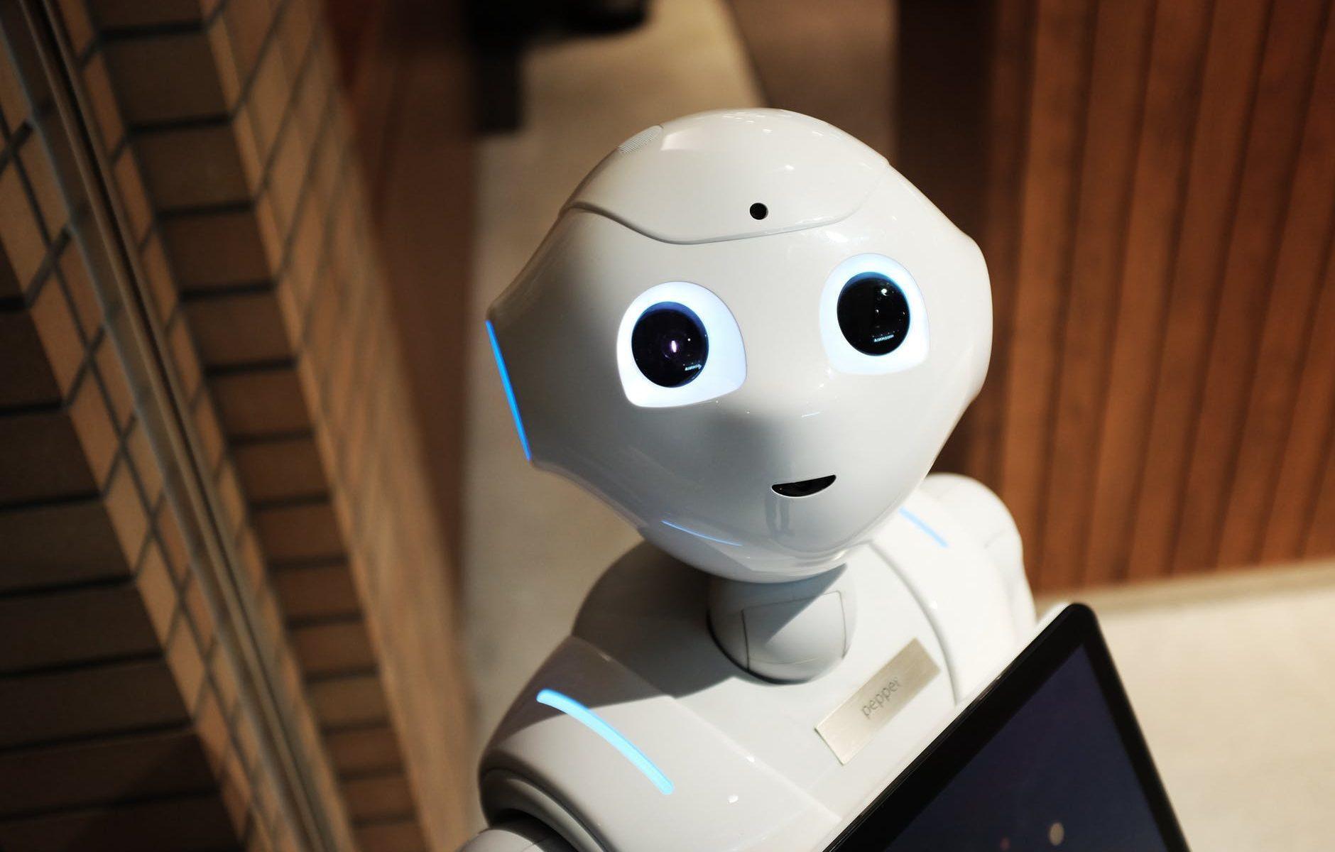 camerieri sfruttati come robot